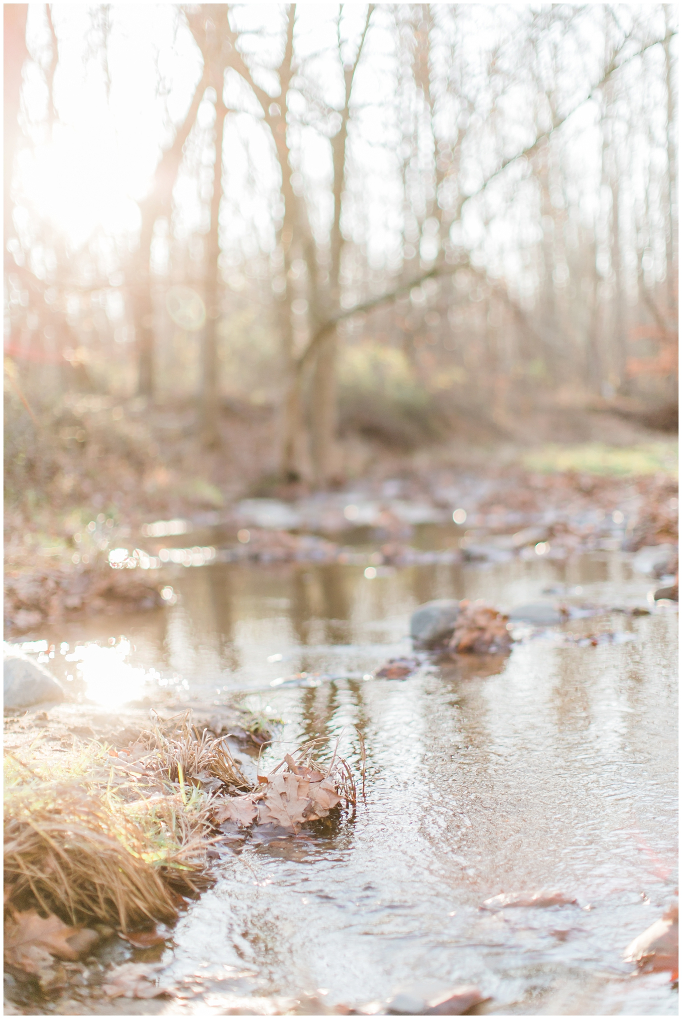 Maryland Photographer_1304